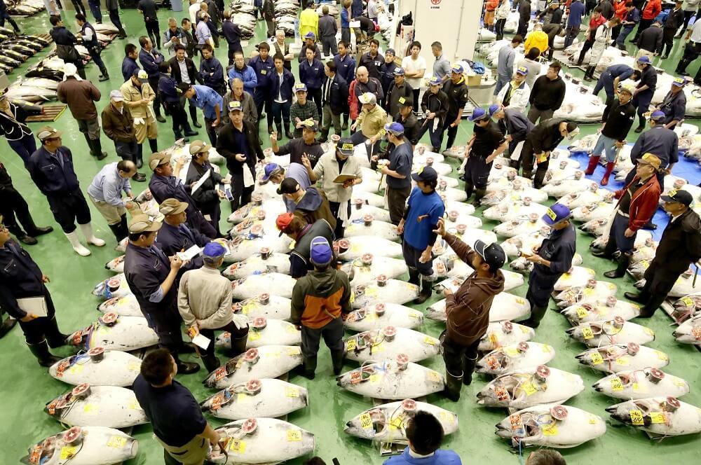 ตลาดปลา ญี่ปุ่น