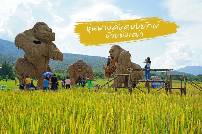 คิงคองยักษ์ ห้วยตึงเฒ่า รูปจาก paiduaykan