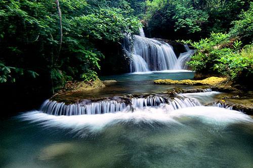 อุทยานแห่งชาติดอยสุเทพ ดอยปุย อ.เมือง จ.เชียงใหม่ #1 รูปจาก ท่องทั่วไทย