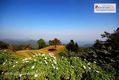 อุทยานแห่งชาติห้วยน้ำดัง เทือกเขาถนนธงชัย #1 รูปจาก Paiduaykan