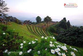อุทยานแห่งชาติห้วยน้ำดัง เทือกเขาถนนธงชัย #2 รูปจาก Paiduaykan