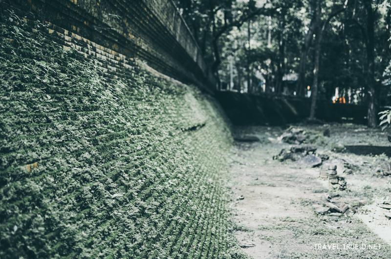 แอ่วเชียงใหม่ ไหว้พระ วัดอุโมงค์ วัดโบราณที่ปกคลุมไปด้วยมอส รูปจาก TrueID 5